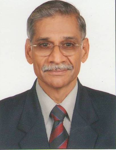 Capt. S. Balasubramanian photo